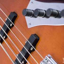 did-fretless2